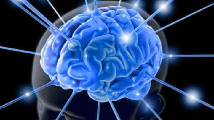 Tejido cerebral sano sin alzheimer