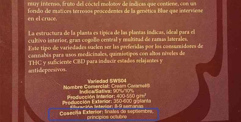 fecha de corte de la marihuana segun fabricante