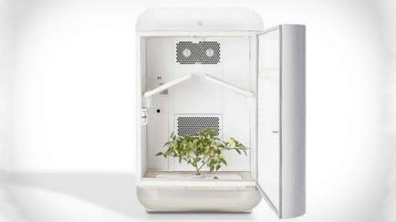 Seedo, el avance tecnológico más sorprendente para el cultivo de cannabis.