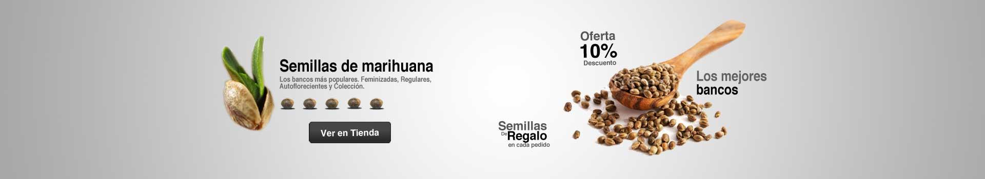 Oferta en semillas de marihuana