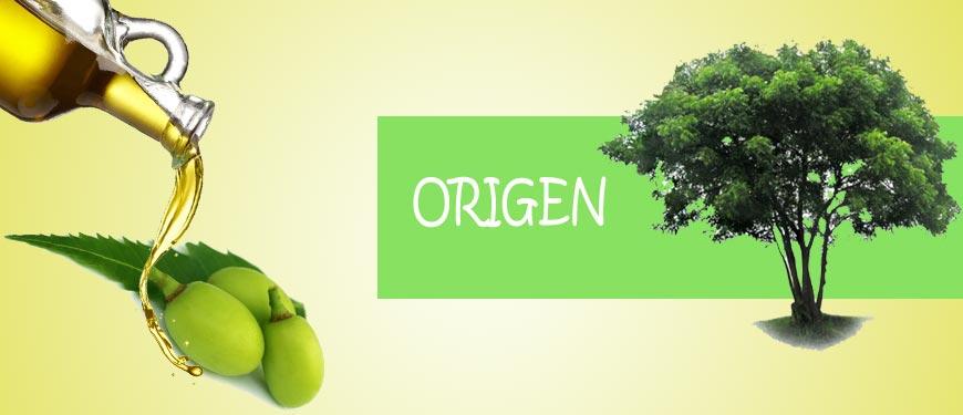 origen del aceite de neem