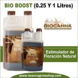 bio booxt