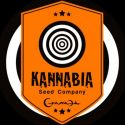 Kannabia Seeds Regulares