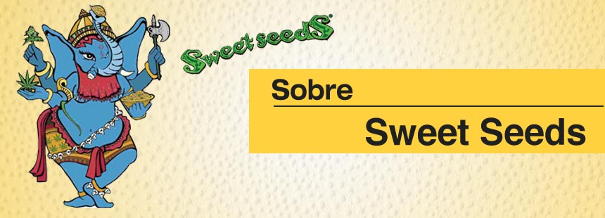 sobre sweet seeds